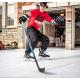 Hockey Shot plocha z umělého ledu